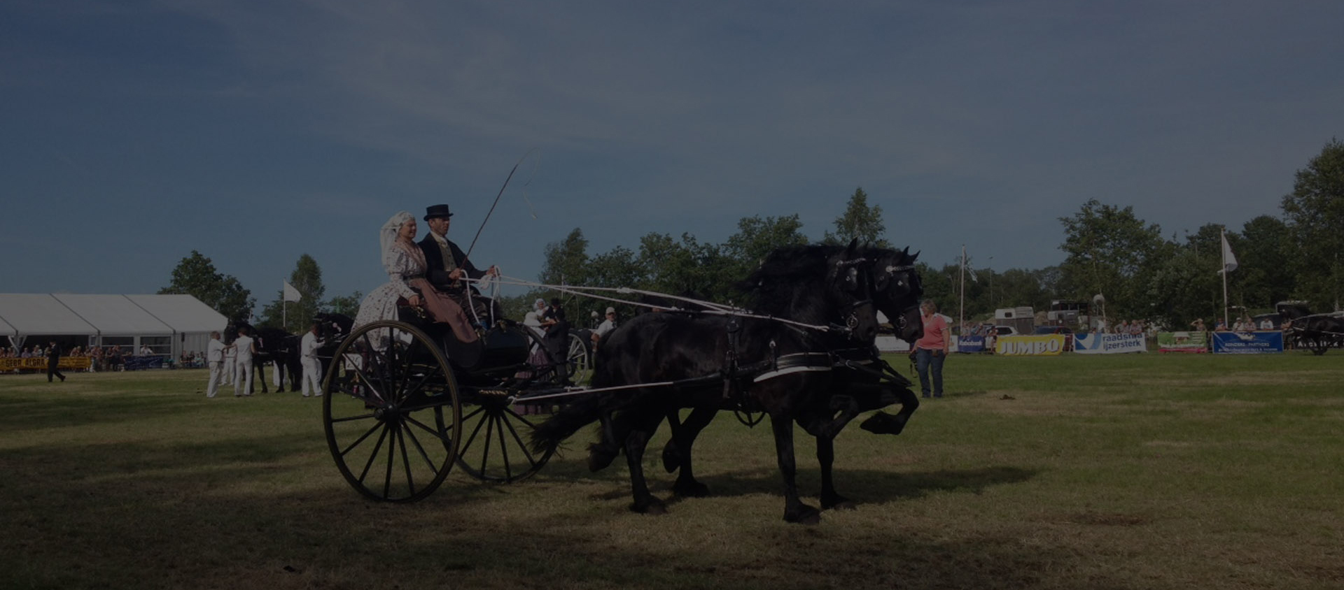 Een must voor iedere paardenliefhebber